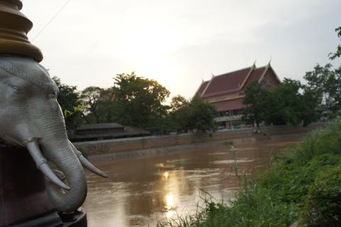 象のモニュメントと川画像